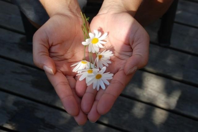 NGÀY PHỤ NỮ VIỆT  NAM 20-10: Lời chúc hay, quà tặng ý nghĩa cho Mẹ, Vợ, Bạn Gái.